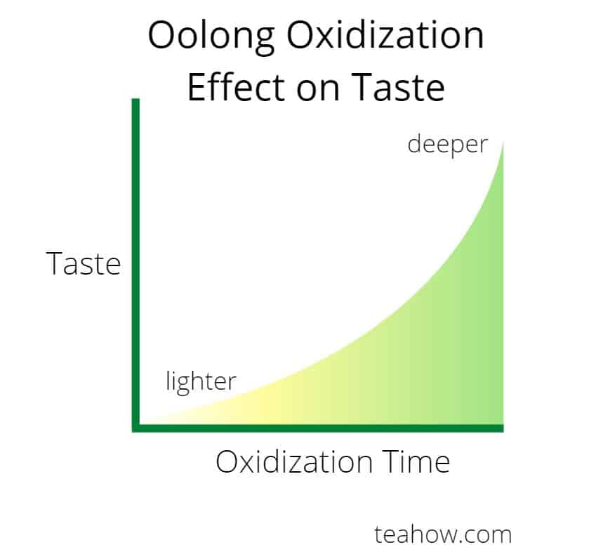 Oolong oxidization time