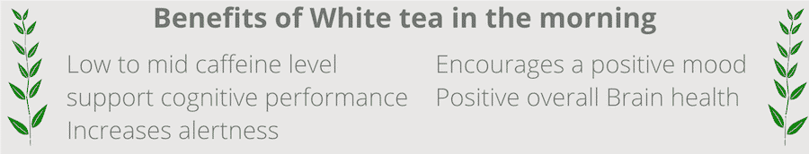 benefits of drinking white tea in the morning