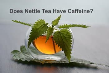 does nettle tea have caffeine - f