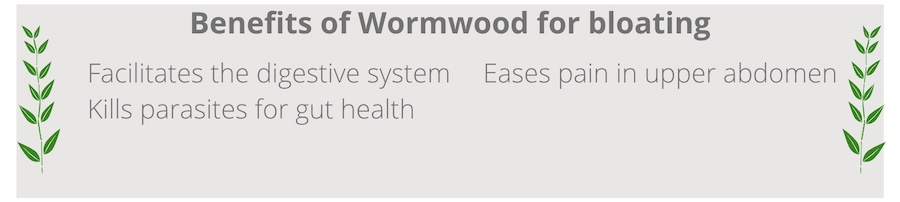 list of benefits of wormwood for bloating